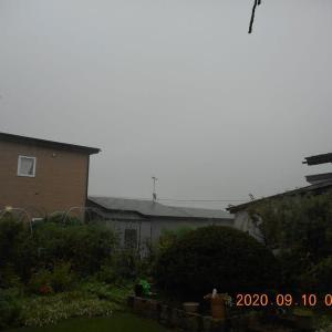 雨が降り猛烈な暑さ和らぐ