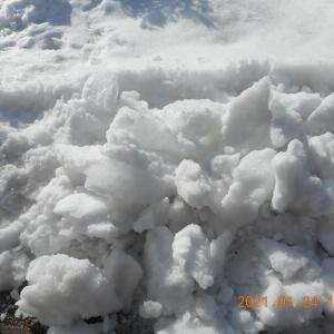 早く融けるようにと願いながら雪の塊を砕く