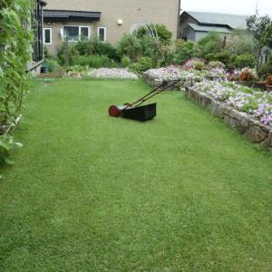 芝刈りをする