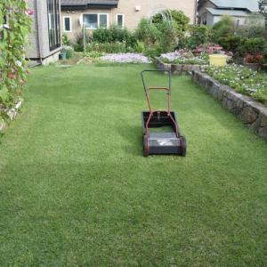早め早めの芝刈りをする