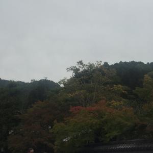秋の京都 紅葉は
