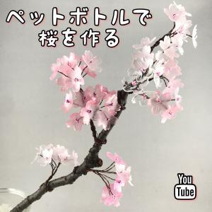 ペットボトルで桜の木を作る