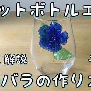 【その1】ペットボトルで青い薔薇を作る How to make blue rose no.1