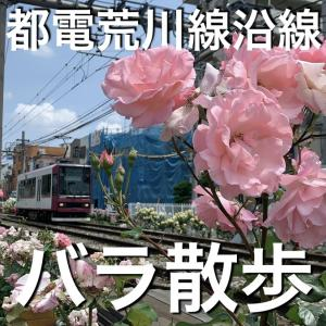 都電沿線バラ散歩 Rose walk in Tokyo