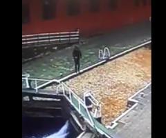 【動画】水面に浮いた落ち葉を地面だと勘違いしてしまう事故