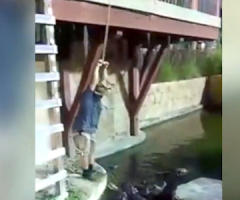 【動画】ワニのショーで起きた恐ろしすぎる事故…