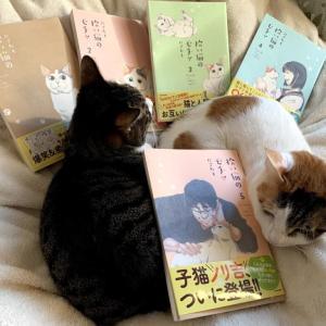 【感想:拾い猫のモチャ5】ノリ吉登場!やっぱり子猫可愛いっ!