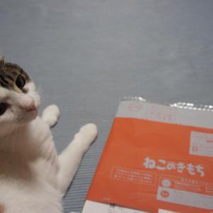 【ねこのきもち(2019/10月号)】付録は「猫ストレス大事典」冊子系おまけなので有用だけどちょっと残念な感じ。