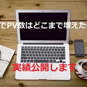 【1周年記念】PV数の実績公開
