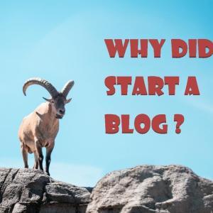 1か月後に改めて考えるブログを始めた理由とプロフィール