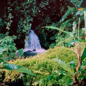 全裸で泳ぐ、マリアンヌ (Discoveryバリ島2)