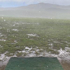 牧場は、とっても水はけが良い!(Destinationsモンゴル5)