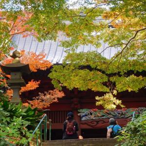 鎌倉・妙本寺◆境内散歩◆