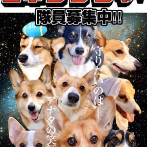 (о´∀`о)コギレンジャーお友達名簿5/29最新版