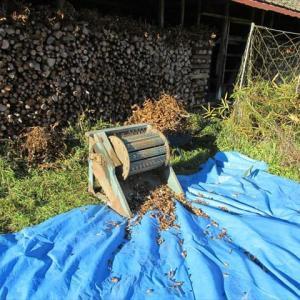 丹波黒豆の脱穀