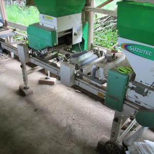 米作り開始