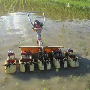 除草機をかける