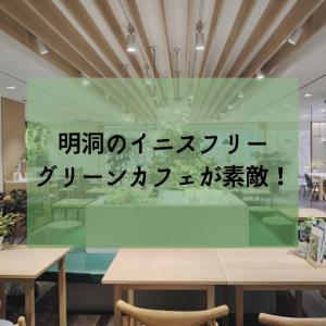 【ソウル 明洞】イニスフリーのグリーンカフェがお洒落で最高です!