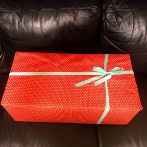 特別なクリスマスプレゼントは念願のキャンプギア