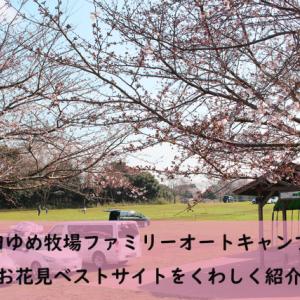 成田ゆめ牧場ファミリーオートキャンプ場レポ①~桜の多いサイトどこ?お花見におすすめのサイトをくわしく紹介~