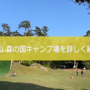 【鳥取 キャンプ】大山 森の国キャンプ場 を詳しく紹介