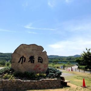 【無料 キャンプ場】埼玉 巾着田 こども連れでの川遊びはここで決まり!