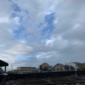 淀の釣り天狗池へ 10月14日祝日(雨) 54枚
