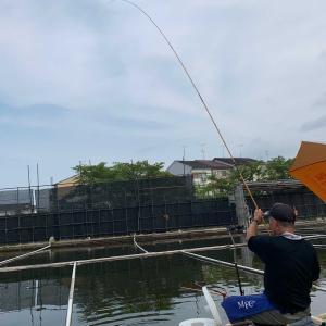 淀の釣り天狗池 釣行記 8月9日(日) 晴れ
