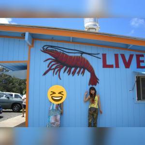 ハワイ観光・ガーリックシュリンプ