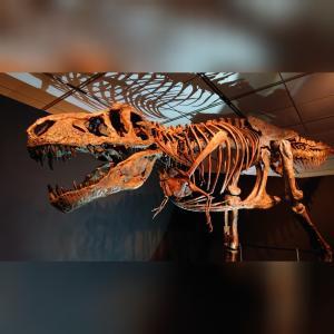 ジュラシック大恐竜展♪