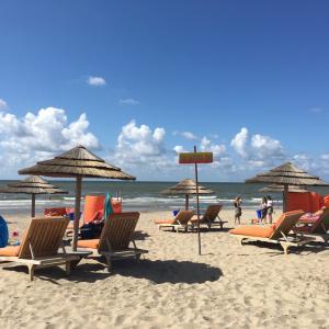 オランダのビーチリゾートで夏を満喫♪