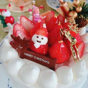 デコレーションに特化したクリスマスケーキレッスン2020
