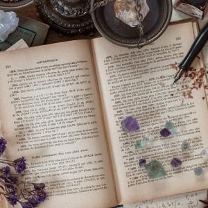 『辺境の怪書、歴史の驚書、ハードボイルド読書合戦』