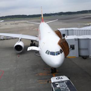 頑張れ!香港航空ヽ(´Д`;)ノ~フライ&クルーズで香港発着ボイジャー・オブザシーズ乗船記ー2019.8月・本編8-1