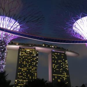 幻の…クアンタムオブザシーズでシンガポールクルーズ2019.3月・ 予約とキャンセルの奮闘記(TдT)【旅行のまとめ】