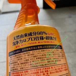 汗と涙とハプニングの玄関掃除。