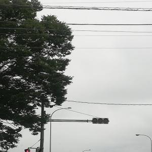 北に向けて出発~2020年北海道車中泊釣行記(1日目)