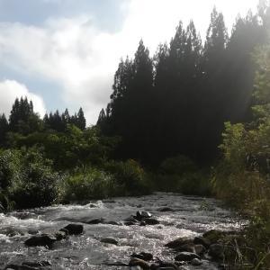 金山川もいまいち~2020年山形遠征記2(10日目)