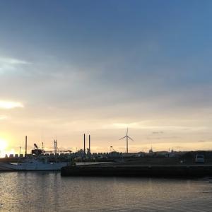 近場のポイント探索完了~茨城南部釣行2020年10月その2