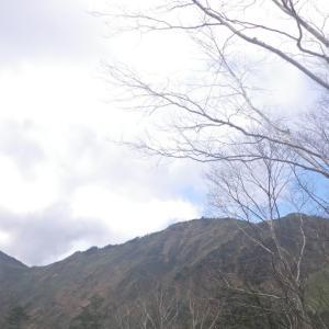 恐怖の三国トンネル~ぐんま県境トレイル白砂山山行2020年10月(2日目後編)
