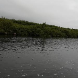 鮭川から小国川へ~2021年山形遠征記3(9日目)