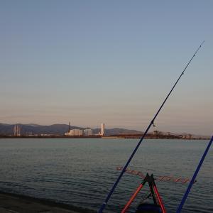 11/13 第47ラウンド 6:00~12:30 石狩湾新港花畔 気温1度~13度 カワガレイ