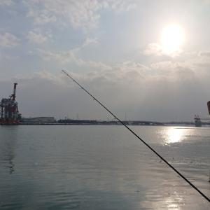 1/21 第1ラウンド 7:30~11:00  石狩湾新港 樽川埠頭 釣りはじめ -3度