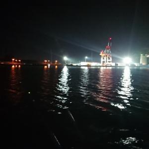 5/4 第13ラウンド 19:00~22:30  石狩湾新港樽川埠頭 直線 8度 久々の夜釣り