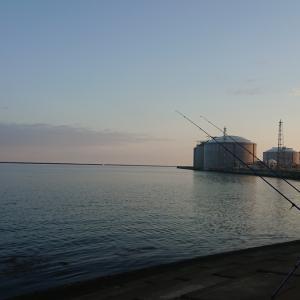 5/20 第18ラウンド 03:45~11:00  石狩湾新港花畔カーブ ガスタンク横 14~23度 カレイシーズンは終わり?