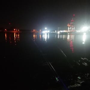 5/25 第21ラウンド 21:00~24:00  石狩湾新港樽川埠頭 モニュメント側 14~12度  ハゼの赤ちゃん2匹