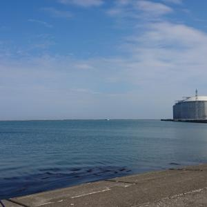 6/2 第22ラウンド 4:00~11:00  石狩湾新港花畔カーブ ガスタンク横 11~23度  イシガレイ、マガレイ、クロガシラ、カワガレイ