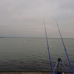 6/9 第24ラウンド 4:00~9:00  石狩湾新港花畔カーブ ガスタンク横 10~17度  カレイシーズン終了か
