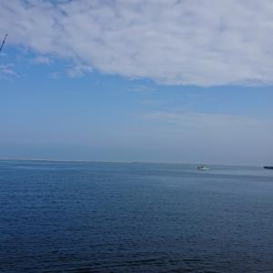 7/8 第34ラウンド 4:00~11:00  石狩湾新港花畔カーブ ガスタンク横  マガレイ1匹  子ハゼ2匹  18度~25度