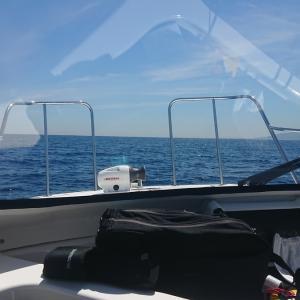 7/15 第37ラウンド 9:30~15:30  小樽沖 船釣り ヒラメ狙い 29度 遂にヒラメに・・・・・